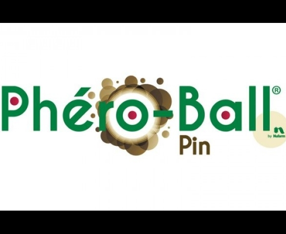 Technologie Phéro-Ball Pin
